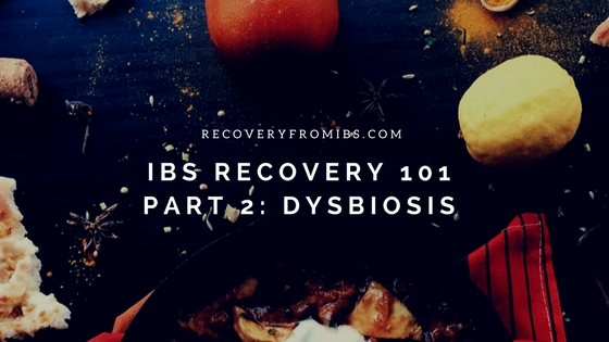 IBS Recovery 101 – Part 2: Dysbiosis
