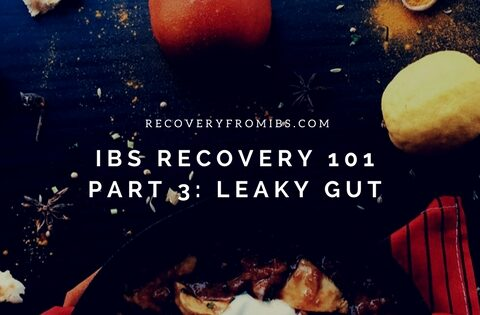 IBS Recovery 101 – Part 3: Leaky Gut